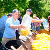 Mike Savinelli was among the several Lions Club members filling the bucket of a bucket loader that carried more than 3,000 ducks to the Church Hill Road bridge that spans the Pootatuck River, where a lucky few would float to the finish Saturday, May 23, during the annual Great Pootatuck Duck Race, hosted by the Lions Club. (Bobowick photo)