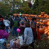 People saw this year's Great Pumpkin Challenge collection contributions lit up on Saturday, October 31, at 14 Main Street. (Bobowick photo)