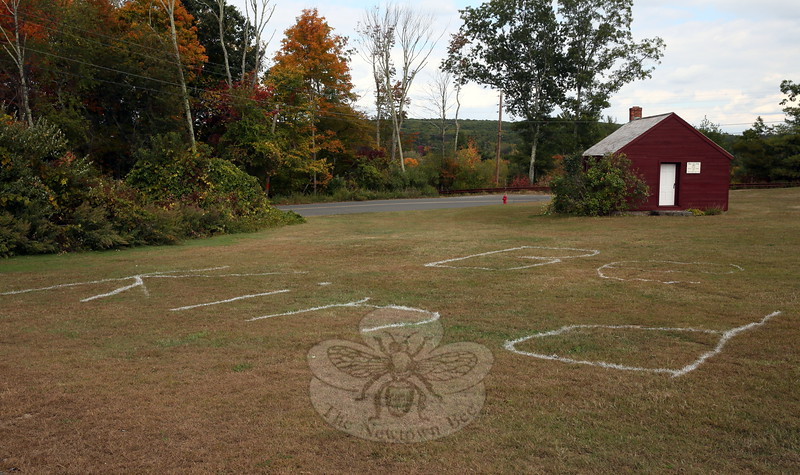 "The words ""Be Kind"" were spelled out on the ground near Middle Gate Elementary School's Little Red Schoolhouse for the school community to use as a guide. Later the words were covered by members of the school community standing together.  (Hallabeck photo)"