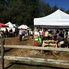 A pleasant morning brought out shoppers to the Bethel Farmers' Market on a recent Saturday morning, where customers can purchase produce, eggs, baked goods, breads, handmade soaps, oils, flowers, and more. Amending Fairfield Hills regulations to allow a broader variety of vendors to the Newtown market would be of benefit, say current Farmers' Market participants. (Crevier photo)