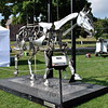 "The 2015 Newtown Arts Festival was held on Saturday, September 20, and Sunday, September 21.  A sculpture, called ""Mechanical Horse,"" by Adrian Landon was on view during the weekend. (Hallabeck photo)"