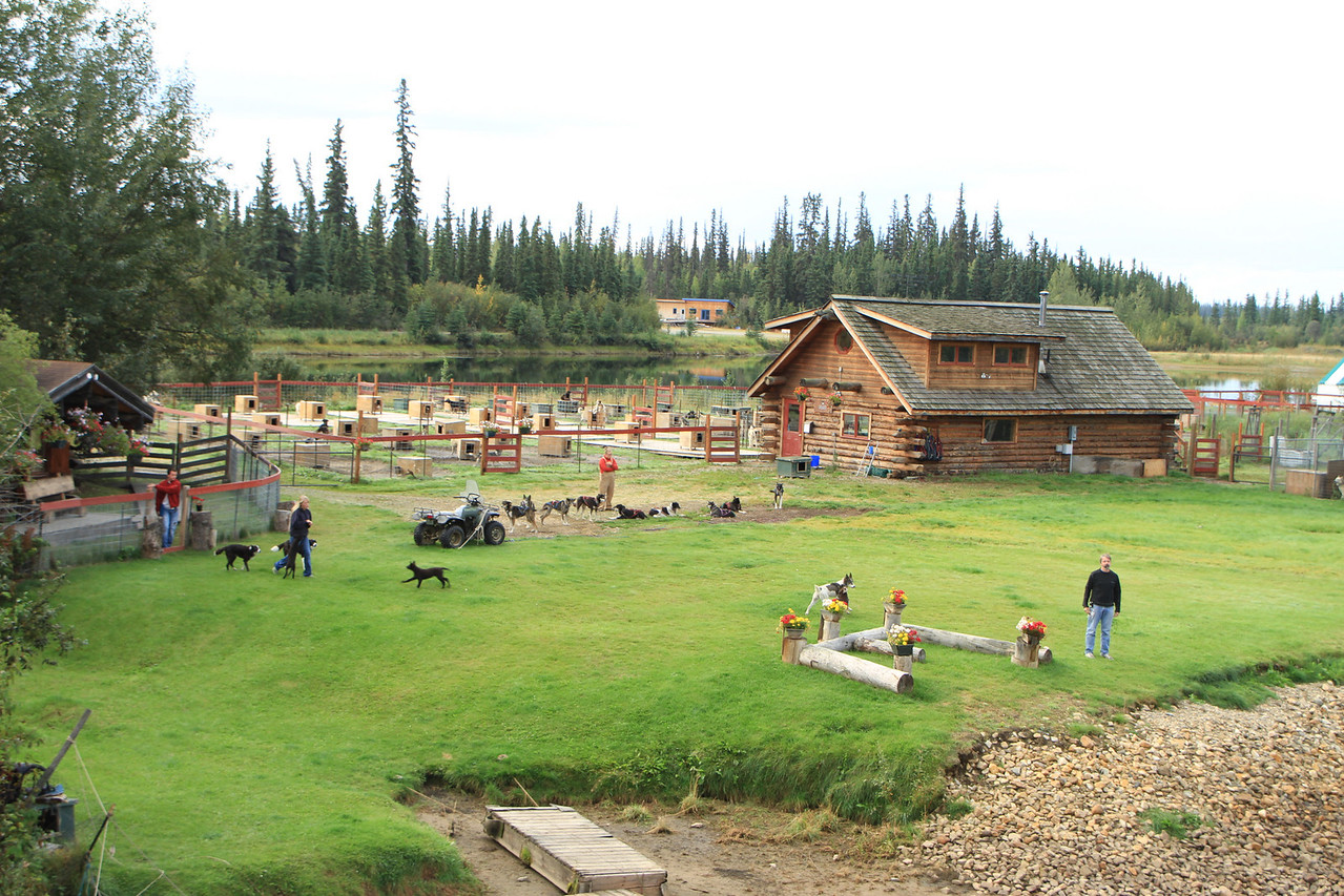 The home and training facility of the late champion Iditarod Musher, Susan Butcher.  Her husband a champion Musher continues to compete and train.