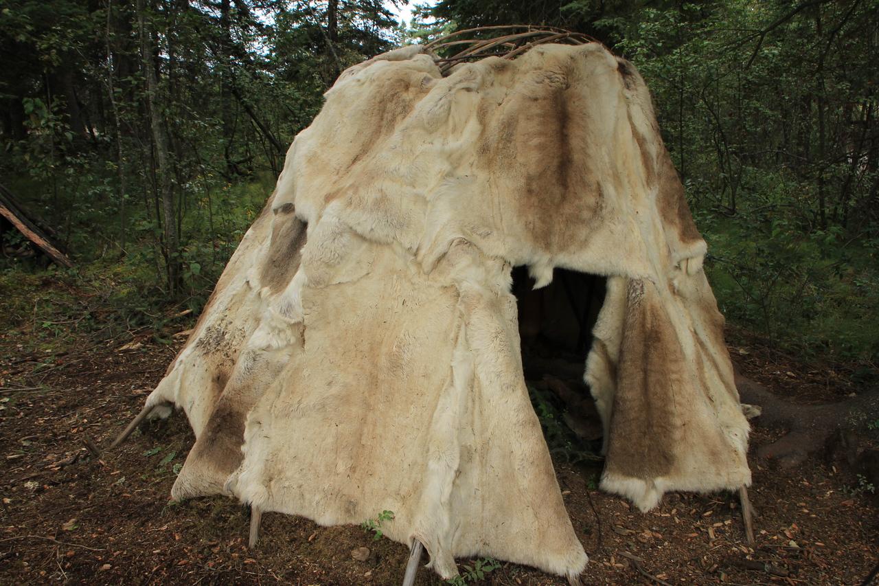 Primative hunting camp