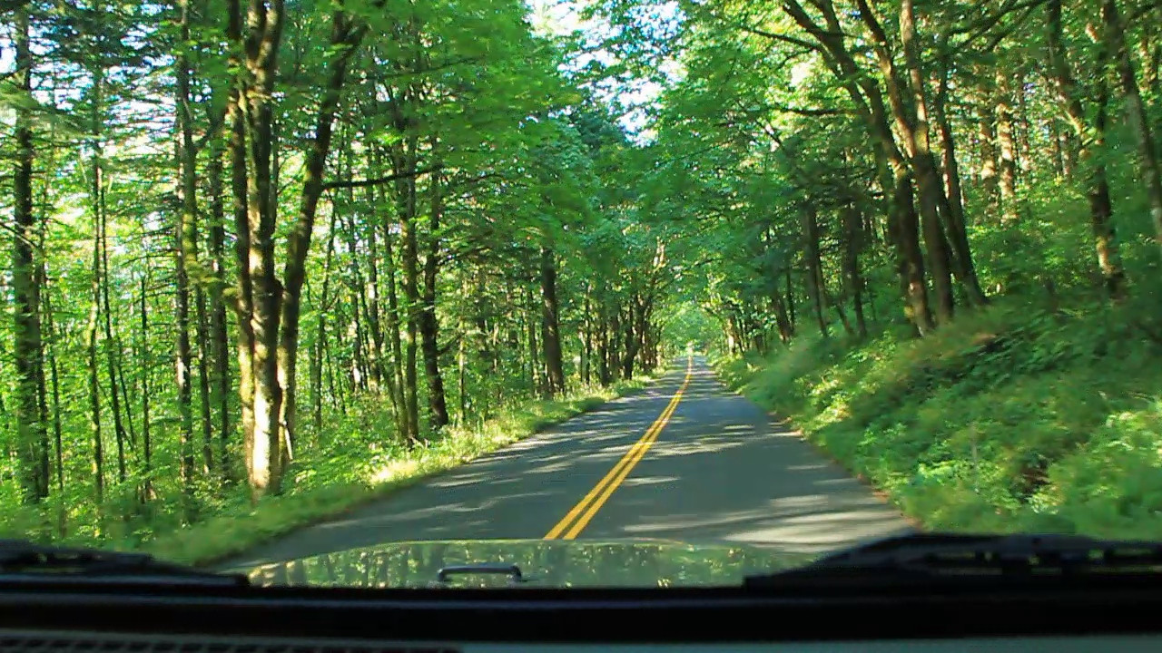 CLICK  on the arrow to take a brief video ride down the historic Columbia River Highway.