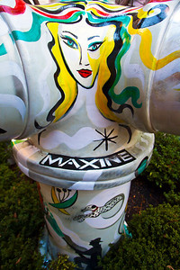 Maxine Fire Hydrant Chicago IL_7168