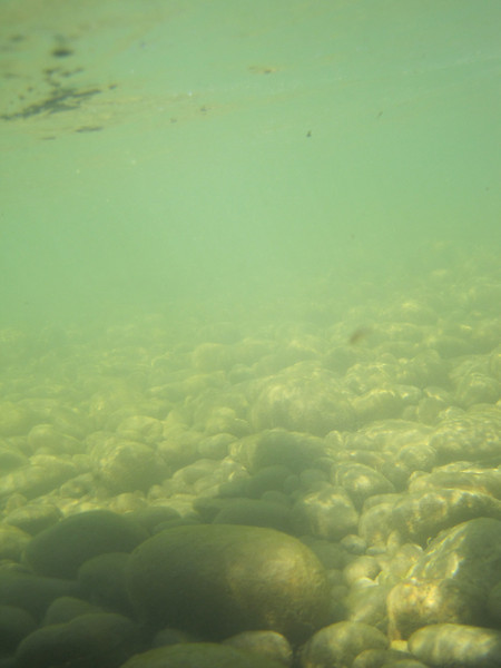 Underwater case allowed a few pictures of the river below the surface.
