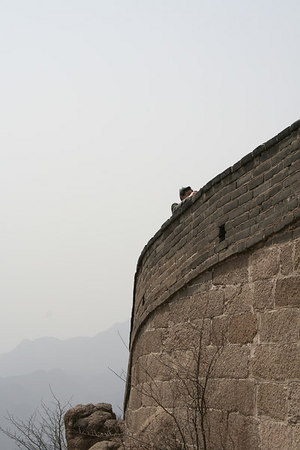 great_wall-090