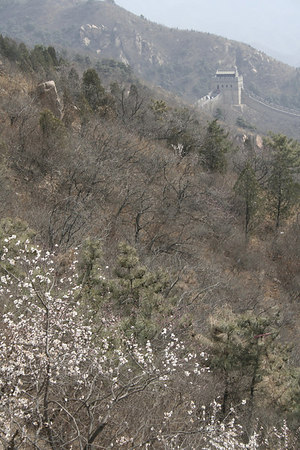 great_wall-044