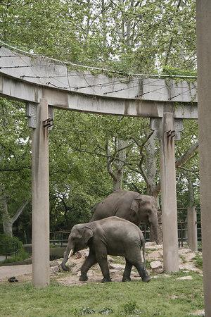 shanghai_zoo-123
