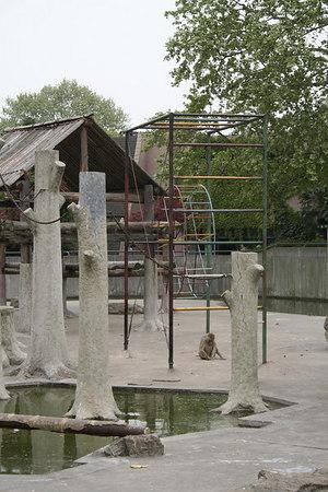 shanghai_zoo-197