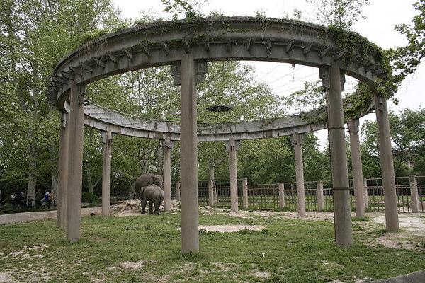 shanghai_zoo-122