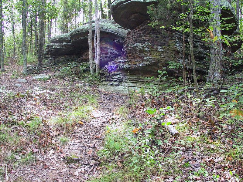 """""""Mushroom Rocks"""""""