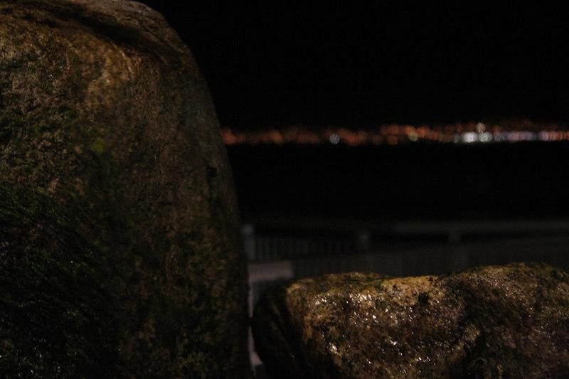 20061111_aquarium_179