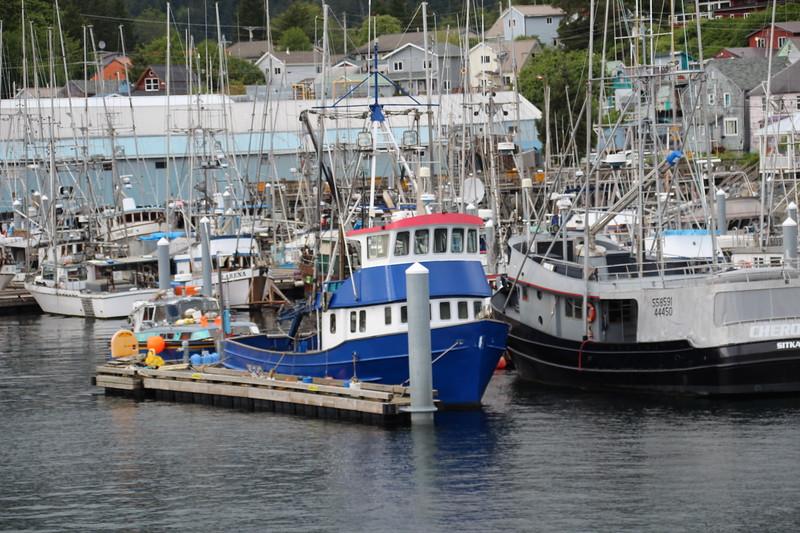 Sitka Harbor-Tea