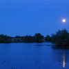 """The trees just below the near-""""supermoon"""" were about where I camped."""