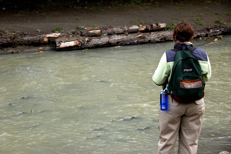 Kyra watching the salmon run.