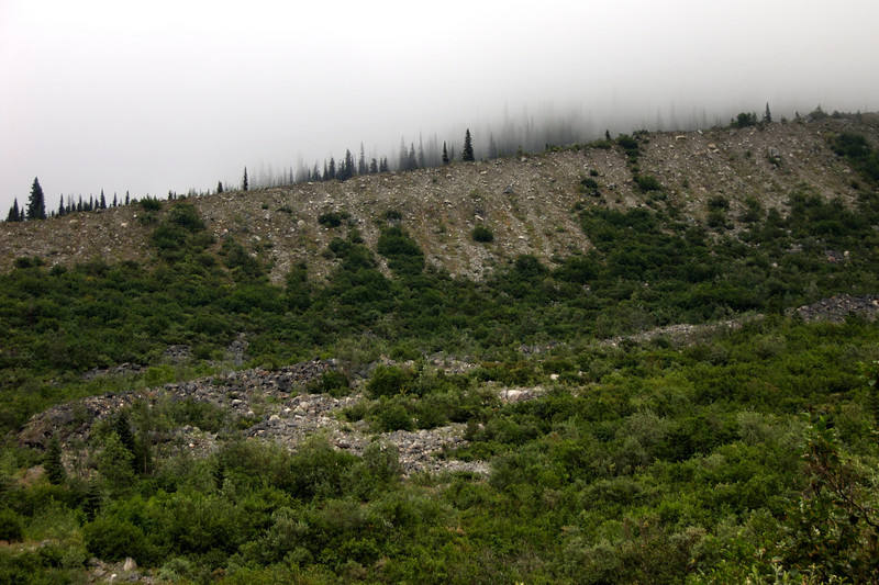The path gouged out by the glacier.