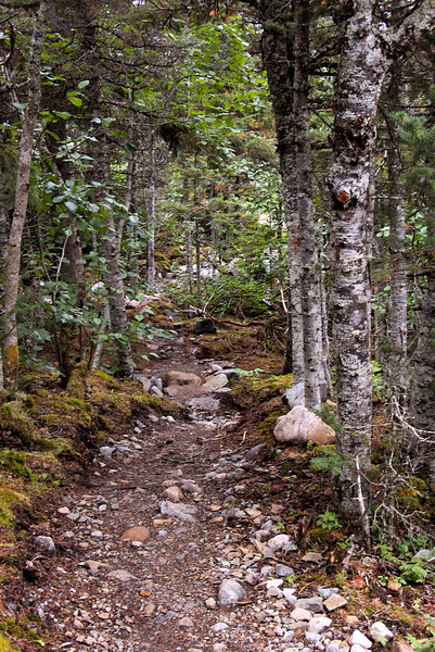 Going back down the trail.