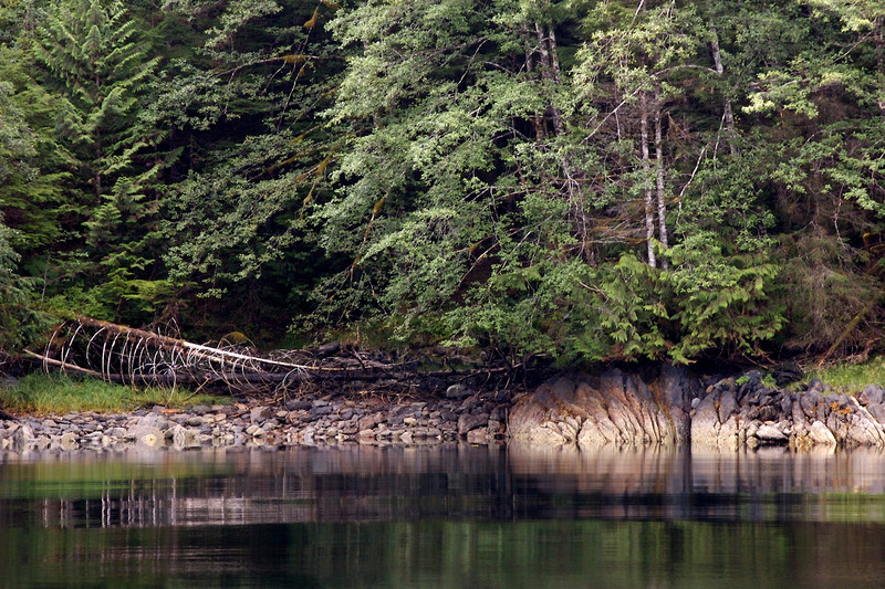 I loved this reflection and the interesting rocky shoreline. Ketchian, Alaska.