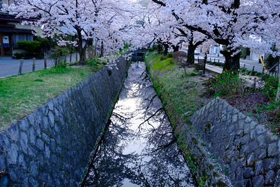 The influential philosopher Kitarō Nishida is said to have used this path for meditation