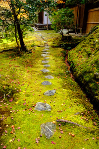 Saiho-ji, the Moss Temple