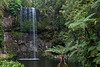 Millaa Millaa Falls. Atherton Tableland, Queensland, Australia. Only a trickle of water at this time but beautiful surroundings.