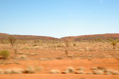 The next morning, we drove out through the McDonnell ranges. The Aboriginal story (or at least one of them) is that they were once caterpillars that follow one behind the other, nose to bum, called Following Caterpillars (good name ;-) that were going to the salt lakes for a drink of water. But when they got there, there was no water and thy got stuck.  Another story is that they're caterpillar men who came to defend the Alice area (before Alice was Alice) from the beetle men. The caterpillar men won--there's even a rock formation outside the airport that looks like an upside-down beetle--and they lined up to defend Alice. In either case, they've been there ever since. The stories describes the ranges perfectly: one long hill rises from the ground, only to drop back into it just as abruptly. Almost immediately the next hill starts. They run one behind another for miles and miles.
