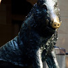This wild boar looks remarkably like the one in the Piazza Della Signoria near the Mercato Nuovo in Florence.