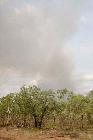 Another bush fire.