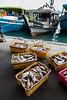 Fishing boats and fish docks, Kota Kinabalu, Sabah, Malaysian Borneo