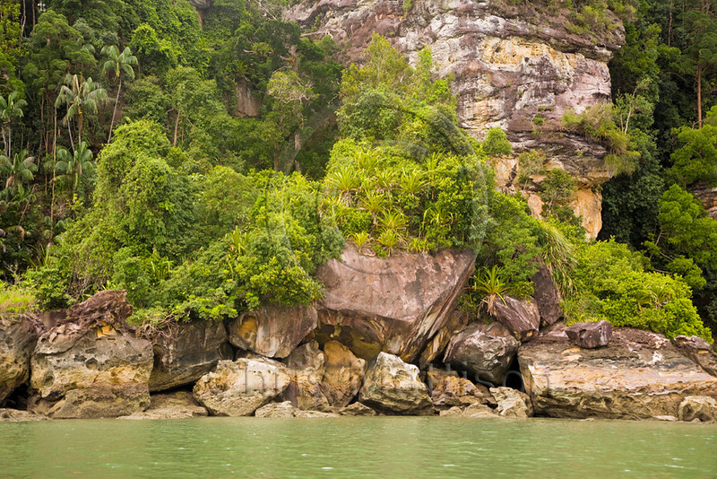 Coastal vegetation, Bako National Park, Sarawak