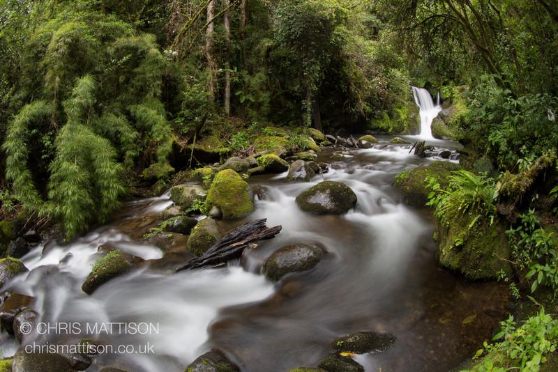 Rio Sevegre, Costa Rica. Long exposure, fish-eye lens.