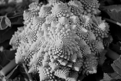 Fractal forms of the Romanesco broccoli