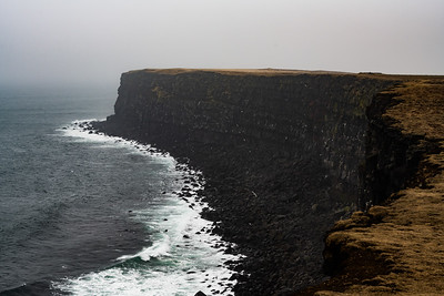 Thousands of birds return to make nests on Icelands numerous cliffs
