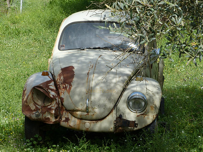 Abandoned VW Beetle