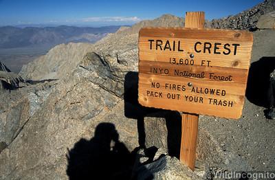 Trail Crest Sign