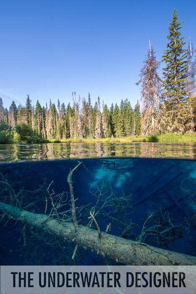 Two worlds at Little Crater Lake