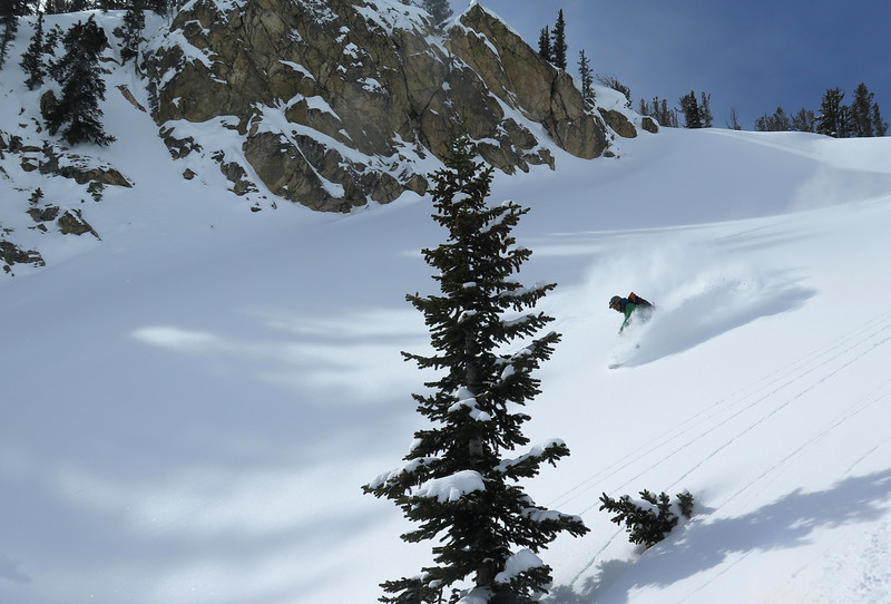Spence sampling late March powder
