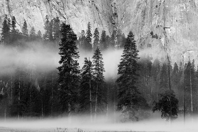 Pre-dawn mist in Yosemite Valley