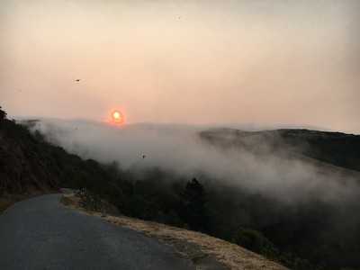 A few days later, the smoke from multiple fires combined with fog to produce an eerie, apocalyptic pall, making the Sun rise deep red over West Old La Honda Road (Woodside)