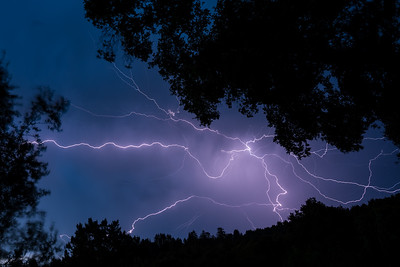 The morning of August 16, 2020 saw a lightning storm of unprecedented power and scope (Portola Valley)