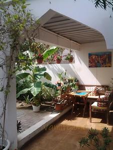 Behlys villa garden