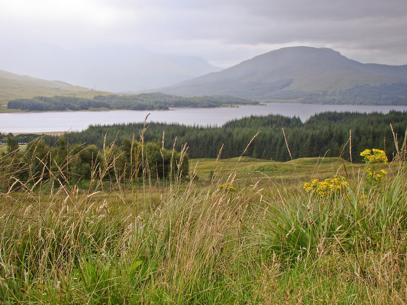 Loch Garry: A trip to Scotland: 4 days, 1400 miles. Totally amazing. Such beauty. Such mood.