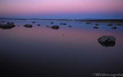Twilight Wedge Mono Lake