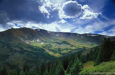 Alpine Center Rocky Mountain National Park