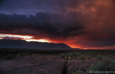 Volcanic Tablelands Sunset Owens Valley