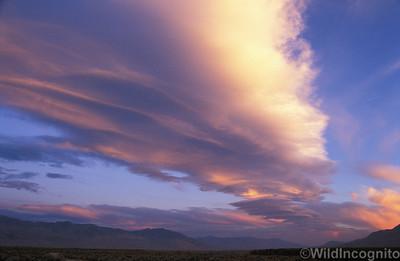 Sierra Wave Owens Valley