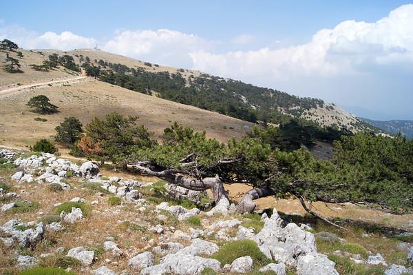 Nif Dağı