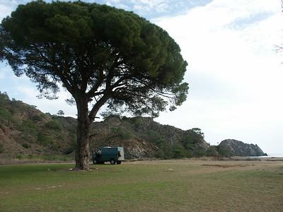 Çıralı beach campspot