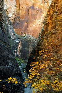 Echo Canyon, Zion National Park
